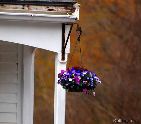 11. flowerbasket