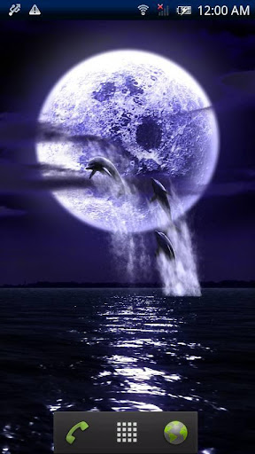 Dolphin★Fullmoon Trial