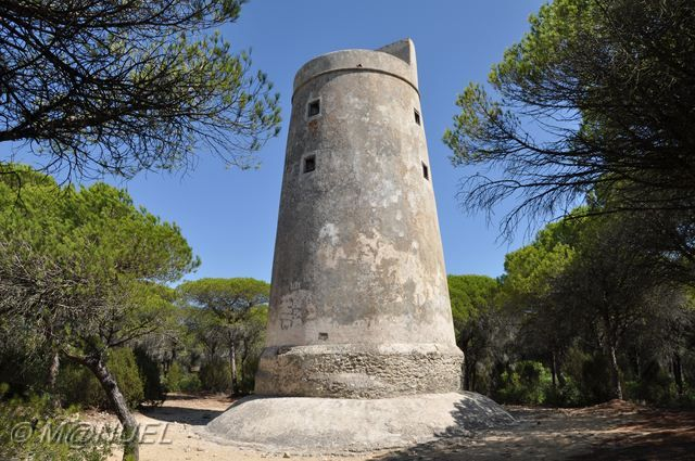 El Jarillo - Torre de Meca