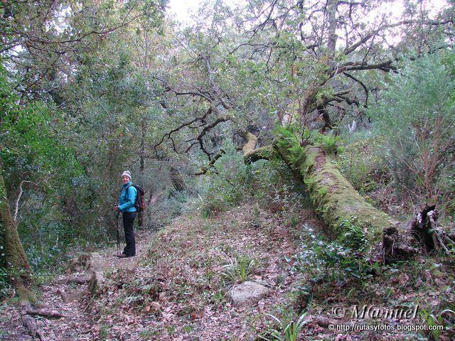 Sendero arroyo San Carlos del Tiradero