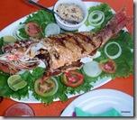 Peixe frito - Cioba