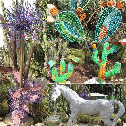kaktuspuiston nayttely 2