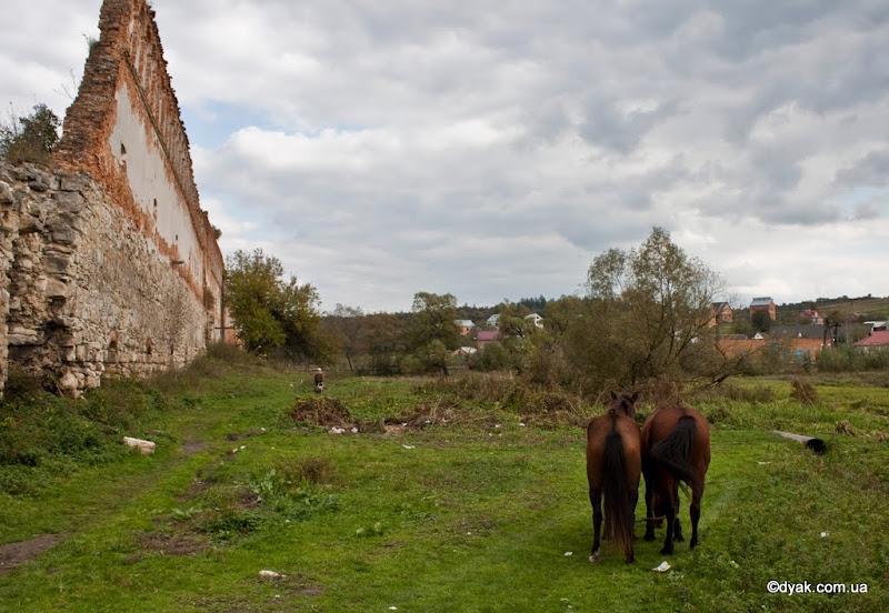 ЗРуїни замку в Старому селі
