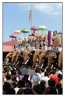 TPRA_015_DSC0095_www.keralapix.com_kerala