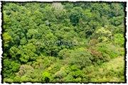 NLPY_003_www.keralapix.com_DSC0031