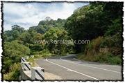 NLPY_004_www.keralapix.com_DSC0047