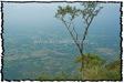 NLPY_076_www.keralapix.com_DSC0178