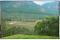 MNR_289_www.keralapix.com_DSC0293