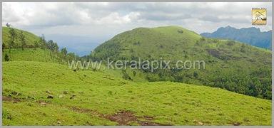 PMDY_014_keralapix.com_ponmudi_keral