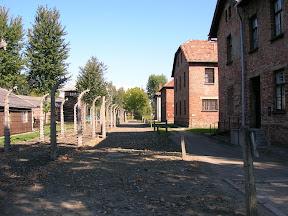 116 - Auschwitz I.JPG