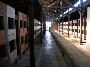136 - Auschwitz II - Birkenau, barracón para prisioneros.JPG