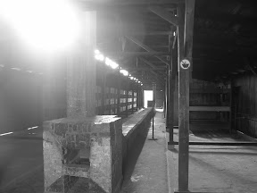187 - Auschwitz II - Birkenau.JPG
