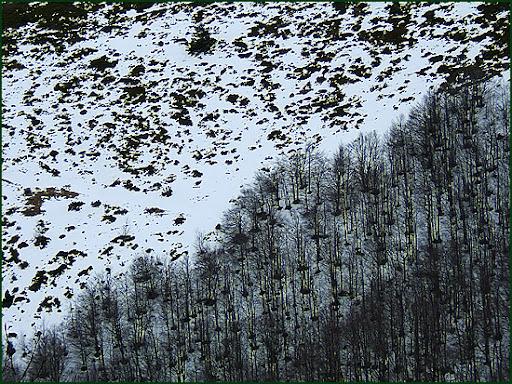 Ascenso a Les Agudes desde Fontmartina por el GR 5-2 5922
