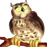 Aves (14).jpg
