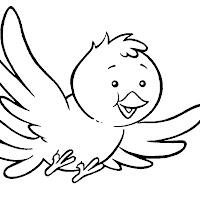Aves (61).jpg