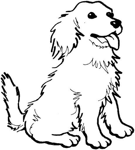 Dibujos de animales mamiferos para colorear - Imagui