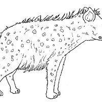 Mamíferos (150).jpg