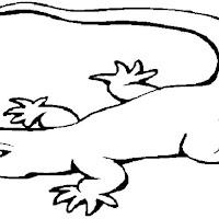 Reptiles (17).jpg