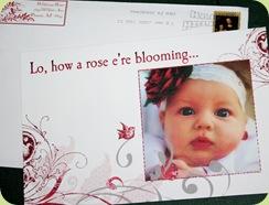 card 2007
