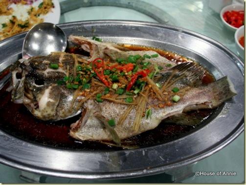 steamed grouper rock road seafood