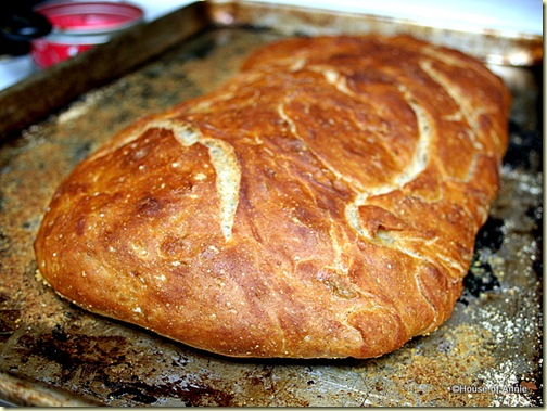 No Knead Ciabatta Bread