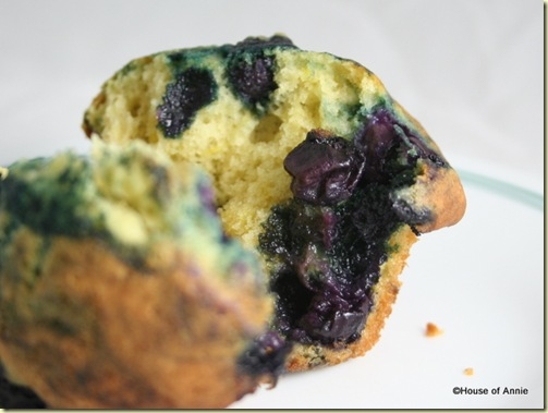 Blueberry Muffin Bursting with Blueberries