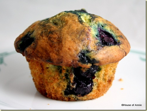Blueberry Muffin Made from Scratch