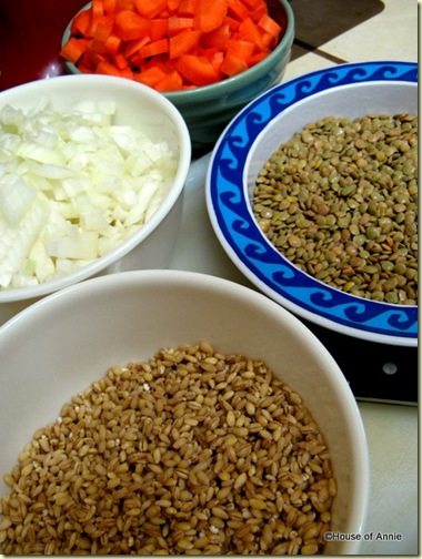 Carrots, Onions, Lentils and Barley
