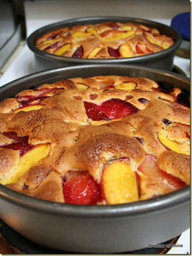 Plum Nectarine Grape Fruit Pastry Baked