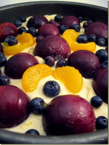 Plum Blueberry Mandarin Fruit Pastry