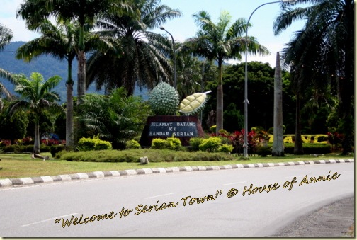 Welcome to Serian Town