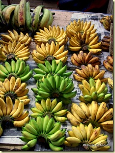assorted banana varieties