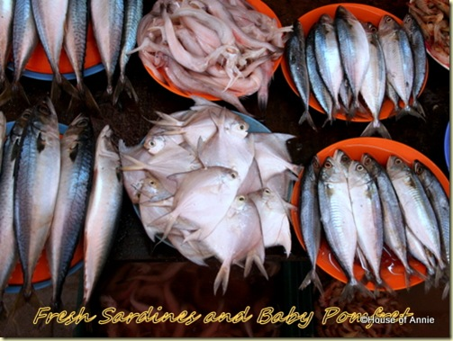 sardines and baby pomfrets