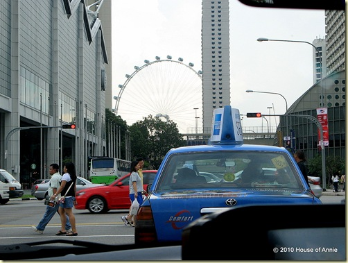 singapore flyer from street