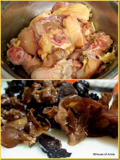 chicken and ginger and fresh black fungus