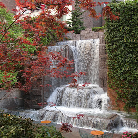 by Pal Mori - City,  Street & Park  Fountains