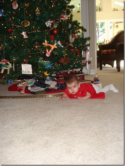 Christmas 2010 373