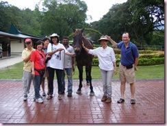 volunteers & horse