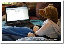 tn_2010-01-06 Browsing Online