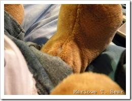 tn_2010-02-20 Naple's Surgery (4)