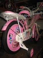 4 Sepeda Anak EVERBEST Sweet Girl - Dop