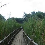 Maya auf dem Weg durch eine Sumpflandschaft