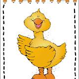 dji_duck.jpg