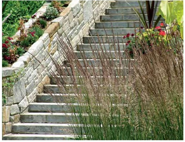 The linear strength of feather-reed grass, Calamagrostis xacutiflora 'Karl Foerster', is both a match and a foil for a stone staircase at Chanticleer in Wayne, Pennsylvania, in late June