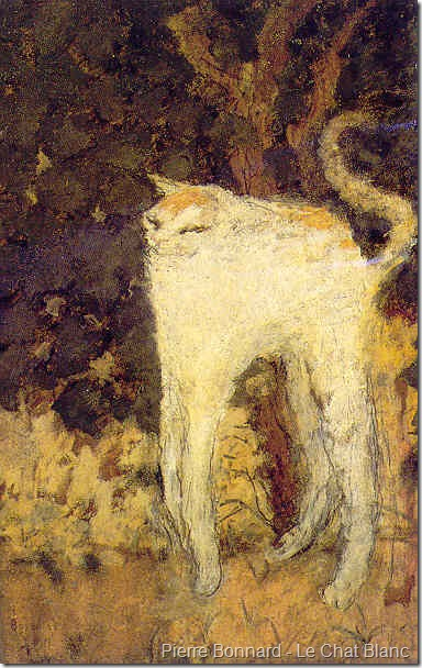 Bonnard le chat blanc