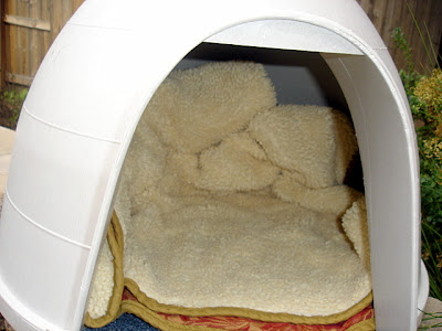 interior of feral cat igloo home very cosy