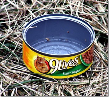 9 lives cat food with Morris the cat on the tin