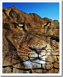 photo montage and manipulation of lion and landscape - by ViaMoi