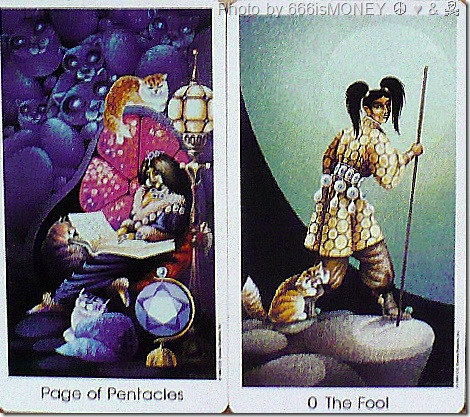 tarot cards cat people tarot cards the fool and page of pentacles