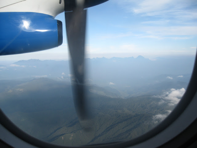 Some small airlines use propeller planes, which can fly closer to the mountains and offer great views.